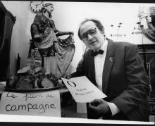 la campagne en 1995